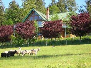 GORGEOUS 10 ACRE HOBBY FARM POSSIBLE SHORT TERM MORTGAGE OPTIONS