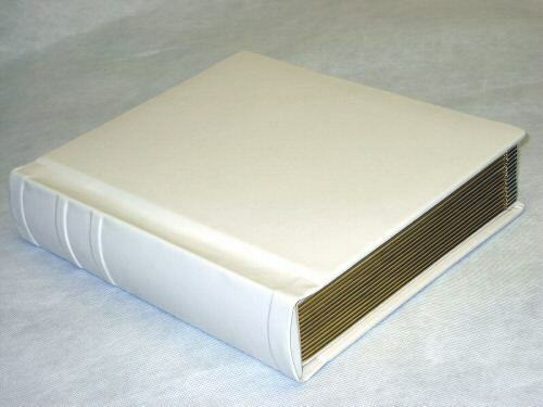 Professional 8x10 ivory Gold Wedding / Parent Photo Album holds 30 Photos
