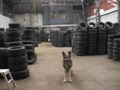 Part Worn Tyres Wholesale