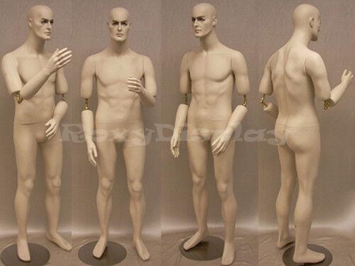 Male Mannequin Manequin Manikin Dress Form Display #MD-BC8S