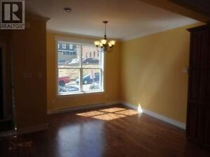 NEW PRICE!!! 48 KINGS ROAD, ST. JOHN'S St. John's Newfoundland image 3