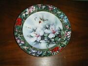 Bradford Exchange Hummingbird Plates