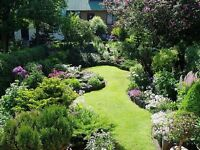 Job offer: Gardener's helper. £60-£70 a day. No experience needed. In Surrey.