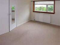 Carpet & flooring specialist