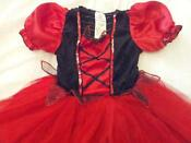Girls Fancy Dress Costumes 2-3