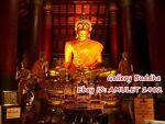 Gallery Buddha