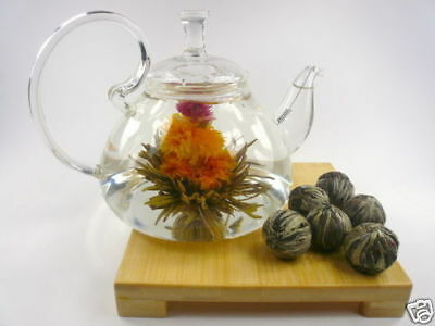 Glass Teapot + 12 Blooming Flowering Tea Gift Set A