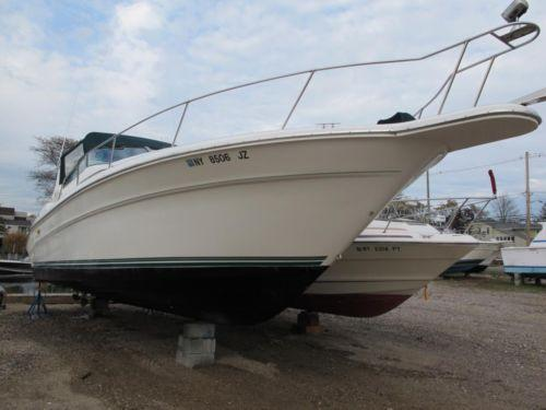 Used sea ray boat ebay for Sea ray fish