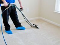 Deep Carpet cleaning - affordable -professional