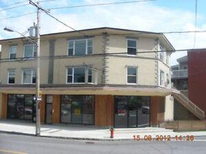 Appartement à louer 4 1/2 - Boulevard des Hêtres