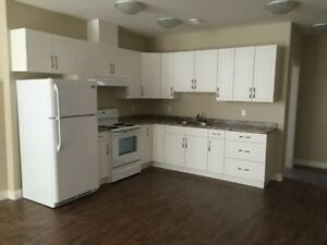 3 Bedroom lower suite in Sunset Ridge