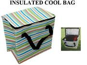 Large Insulated Bag