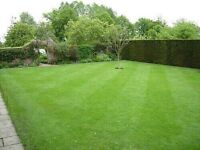 EXPERIENCED LAWN MOWING AND YARS MAINTENANCE