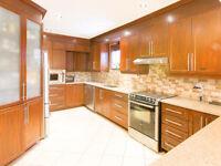 Luxurious beautiful concept duplex