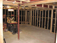 Basement Framing and General Renovations