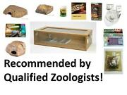 Vivarium Starter Kit