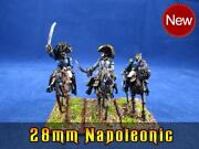 28mm Napoleonic Painted