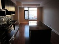 Gorgeous Newer 1Bdrm Studio in the Glebe! Granite, Hardwood!Jan1
