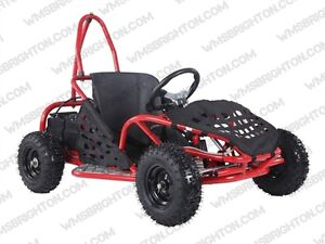 Kids Electric 800 Watt Go Karts / Buggies on for $799.99! SAVE!