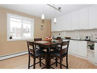 SPACIOUS 2 BEDROOM NEAR CHINOOK MALL AND DOWNTOWN