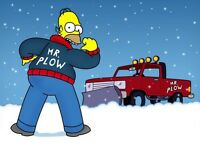 Snow plowing !!! $20 and up
