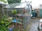 Used Wooden Greenhouse