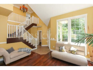 one basement room for rent in North Delta sunshine hill