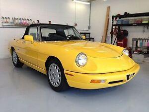 Mint Condition 1992 Alfa Romeo Spider Veloce
