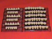 Denture Teeth