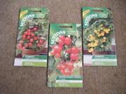Hanging Basket Tomatoes