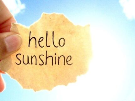 Hello Sunshine Cleaning * Exit Clean Specialist * Spring Clean Brookvale Manly Area Preview
