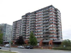 Beautiful 2 bedroom 1 Bath condo downtown Kingston