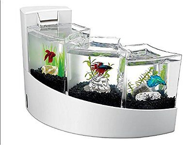 Betta Fish White Tank With Divider Frosted Tanks Filter Waterfall Aquarium Cubes