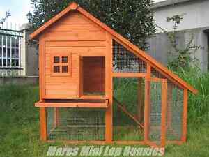 ♥♥♥ Slopped Roof Rabbit Hutch ♥♥♥ Brand New ♥♥♥ Londonderry Penrith Area Preview