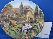 Wedgwood Collectors Plates