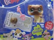 Littlest Pet Shop 623