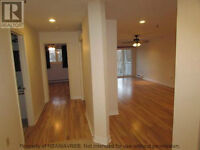 New Renovated one bedroom, Central Halifax, very low condo fees