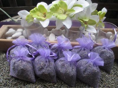 10 Fragrant Lavender Buds Sachet Bags, Bridal Party favor Moth               ()