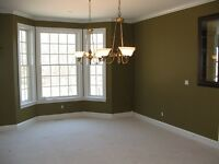 Interior Painter Looking For Work.