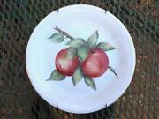 Bavarian Hand Painted Plate