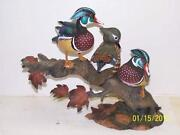 Ducks Unlimited Wood Duck