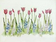 Watercolour Paintings Flowers