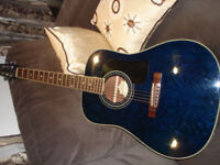 Washburn D11TBL accoustic guitar