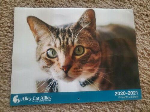 Cat Calendar 2021-16 Mos incl Sept-Dec