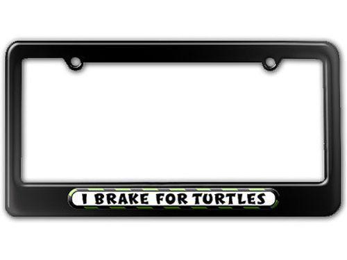 Turtle License Plate Frame Ebay