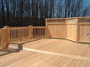 Carpenter 15 years experience West Island Greater Montréal image 4