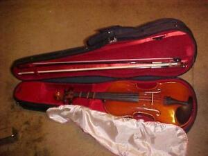 violin cases for sale