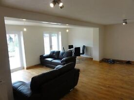 1 double room in a fantastic shared house