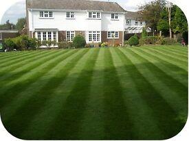 Garden maintenance all garden work undertaken