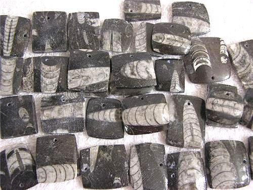 Orthoceras fossil pendant geometric polished both sides 5 pendants per lot